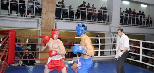 Сборная КЧР по боксу завоевала пять медалей на первенстве СКФО